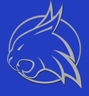 Smyer Independent School District Logo